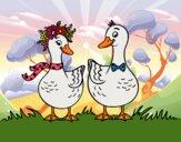 Desenho Par de patos pintado por ImShampoo