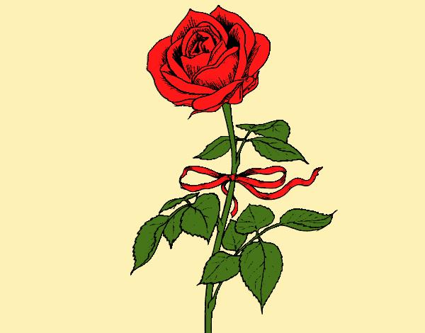 desenho de uma rosa pintado e colorido por americo o dia 13 de