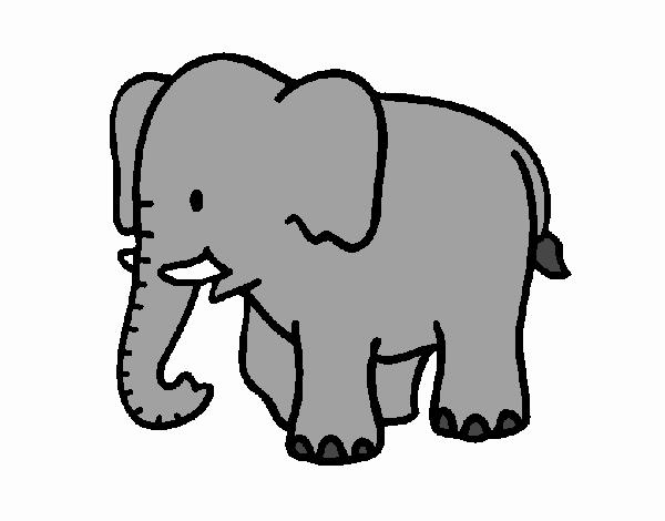 desenho de elefante bebé pintado e colorido por anapestana o dia 12
