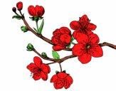 Desenho Filial da cereja pintado por tissamatos