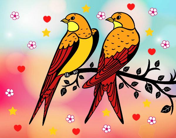 Desenho De Dois Passarinhos Pintado E Colorido Por Usuário