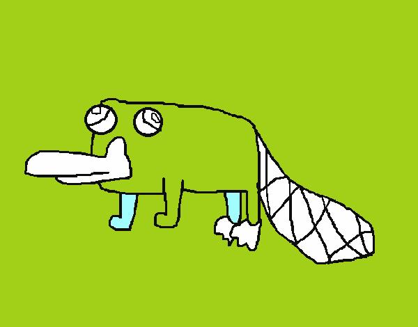 desenho de perry o ornitorrinco pintado e colorido por usuário não