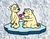 Casal de ursos apaixonados