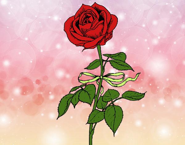 desenho de uma rosa pintado e colorido por monicanina o dia 16 de