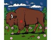Desenho Búfalo pintado por hinary