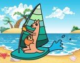 Desenho Cangurus em uma prancha windsurf pintado por LLL321