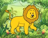 Leão adulto