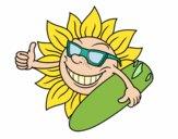 Sol Surfer