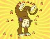 Desenho Equilibrista macaco pintado por Izabela6