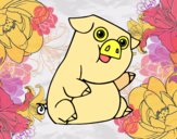 Un porco