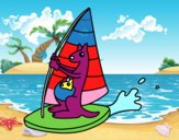 Cangurus em uma prancha windsurf