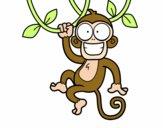 Macaco pendurado