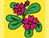 Desenho Flores 4a pintado por carmasiana
