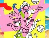 Macacos a fazer malabarismos