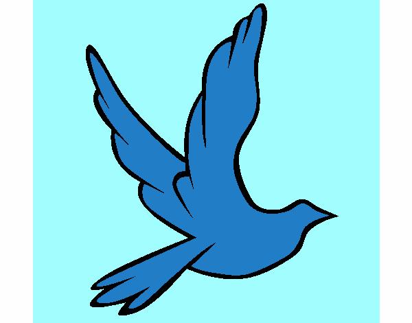 Pomba da paz a voar