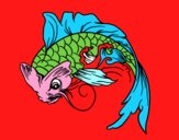 Peixe Koi
