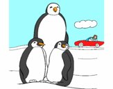 Familia pinguins