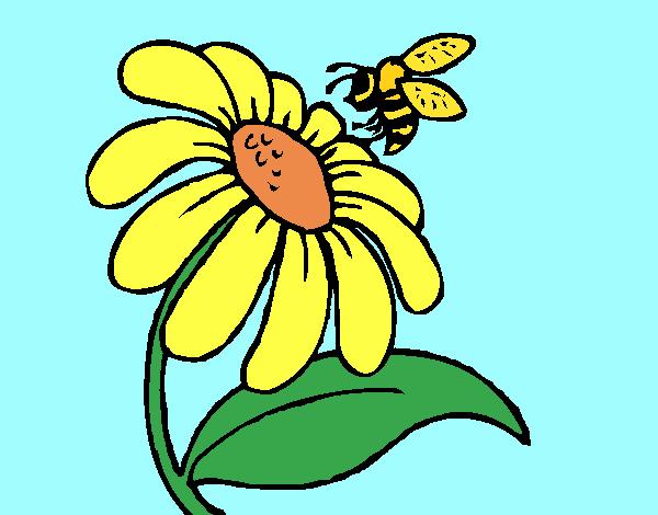 Desenho Margarida com abelha pintado por Craudia