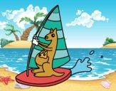 Desenho Cangurus em uma prancha windsurf pintado por Craudia