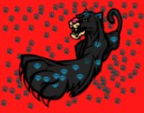 Garra de pantera