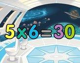 5 x 6
