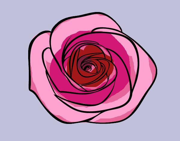 Desenho De Flor De Rosa Pintado E Colorido Por Ceciliaz O Dia 06 De