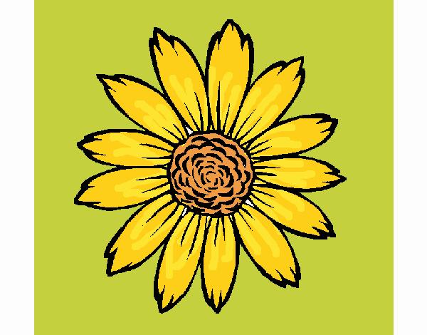 Desenho Girassol pintado por Craudia