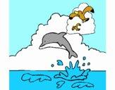 Golfinho e gaviota