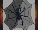 Desenho Aranha pintado por darkcorvo