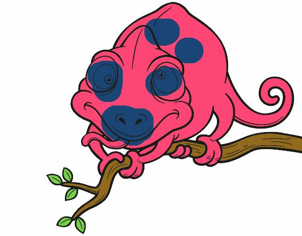 desenho de camaleão num ramo pintado e colorido por usuário não