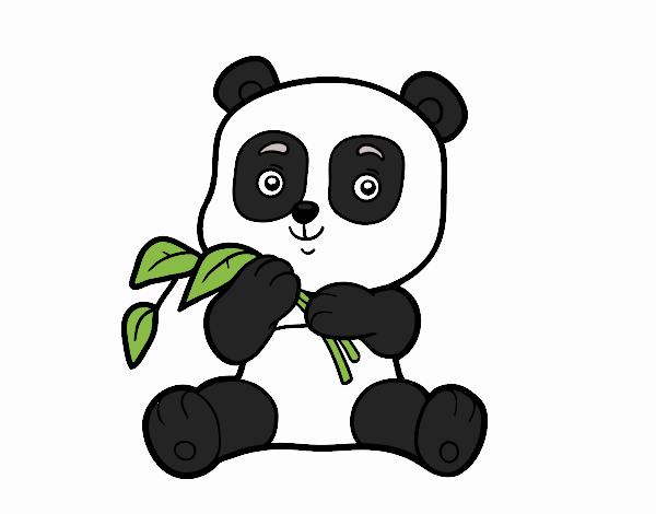Desenho De Um Urso Panda Pintado E Colorido Por Jujuli O