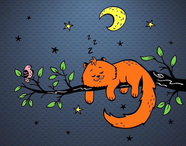Desenho O gato ea luna pintado por luanah
