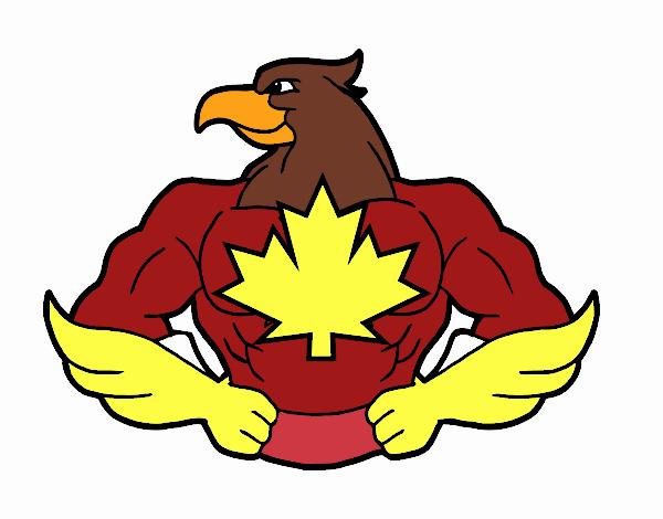 Super pássaro