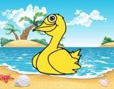 Um pato