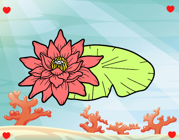 flores no mar