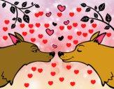 Lobos apaixonados