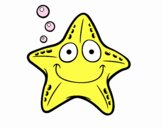 Estrela náutica
