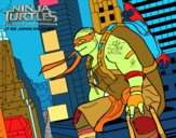 Michelangelo  Nija Turtles