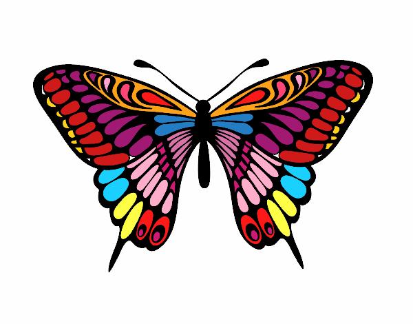 Desenho De A Borboleta Mais Bonita E Mais Colorida Do