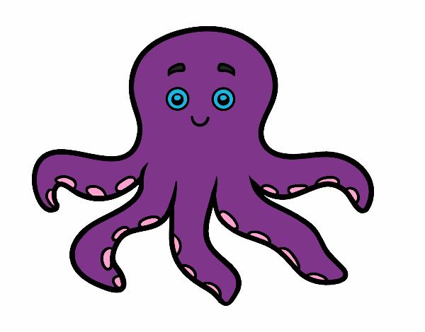 desenho de polvo infantil pintado e colorido por usuário não
