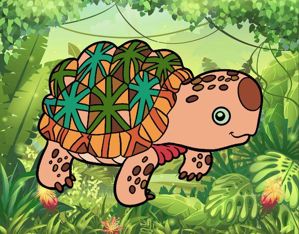 Desenho Tartaruga estrelada indiana pintado por kellyalmei