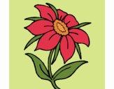 Desenho Flor silvestre pintado por Craudia