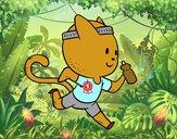 Gato runner