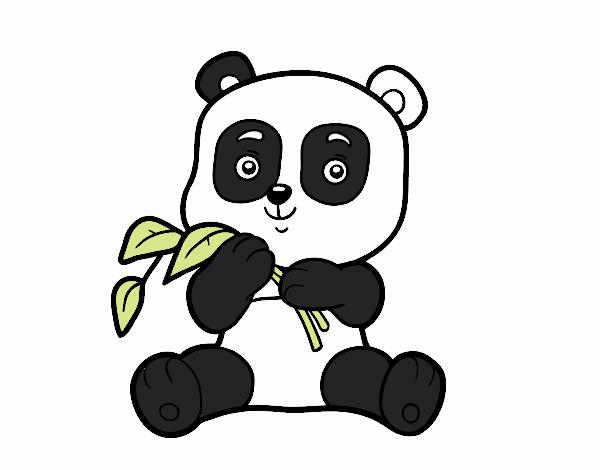Desenho De Um Urso Panda Pintado E Colorido Por Usuário