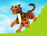 Desenho O tigre-de-bengala pintado por rian123