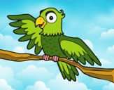 Desenho Papagaio en liberdade pintado por rian123