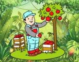 Desenho Um fazendeiro pintado por Sheron