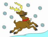 Uma rena do Natal