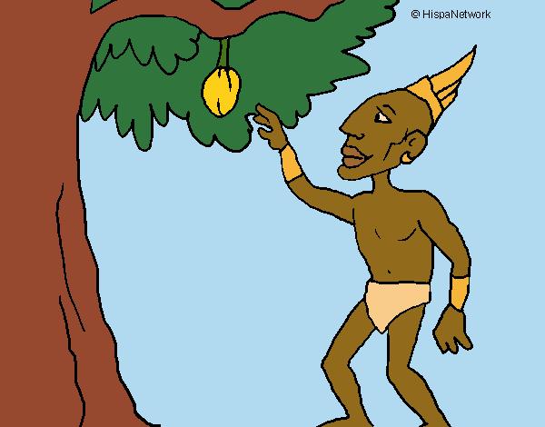Maia numa árvore de fruto