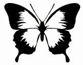 Borboleta com asas negras